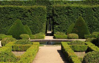 A classic French garden design with symmetrical pathways leading to a fountain.