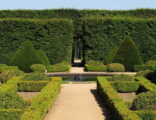 10 Landscape Design Ideas that Add French Style